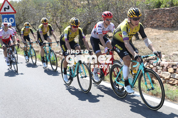 Cycling: Vuelta España 2019 / Tour of Spain 2019/ La Vuelta/ Etapa 7/ Stage 7/ <BR>MARTIN Tony (GER)<BR>Onda - Mas de la Costa (183,2 km) 30-08-2019/<BR>Vuelta España 2019 / La Vuelta/ Tour of Spain 2019/<BR>Luis Angel Gomez <BR>©PHOTOGOMEZSPORT2019