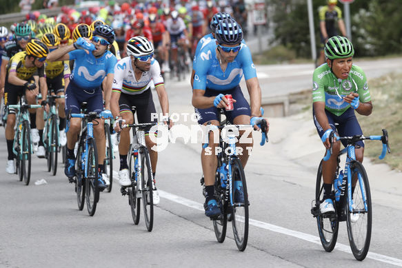 Cycling: Vuelta España 2019 / Tour of Spain 2019/ La Vuelta/ Etapa 8/ Stage 8/ <BR>MAILLOT VERDE SPRINT/ GREEN SPRINT JERSEY/ QUINTANA Nairo (COL)<BR>Valls - Igualada (166,9 km) 31-08-2019/<BR>Vuelta España 2019 / La Vuelta/ Tour of Spain 2019/<BR>Luis Angel Gomez